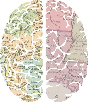Mapéate el cerebro